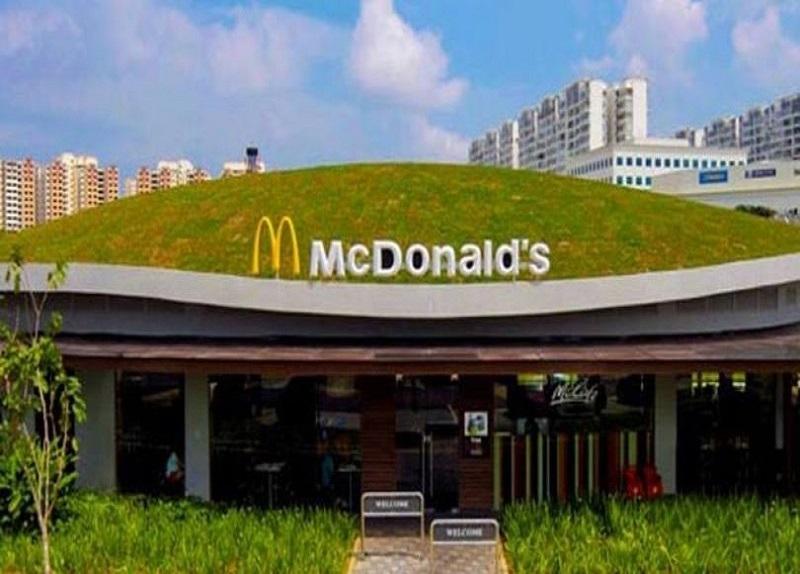 Impermeabilização de Telhado Verde